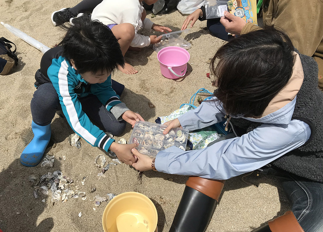 記事 須磨海岸で微小貝を集めようのアイキャッチ画像