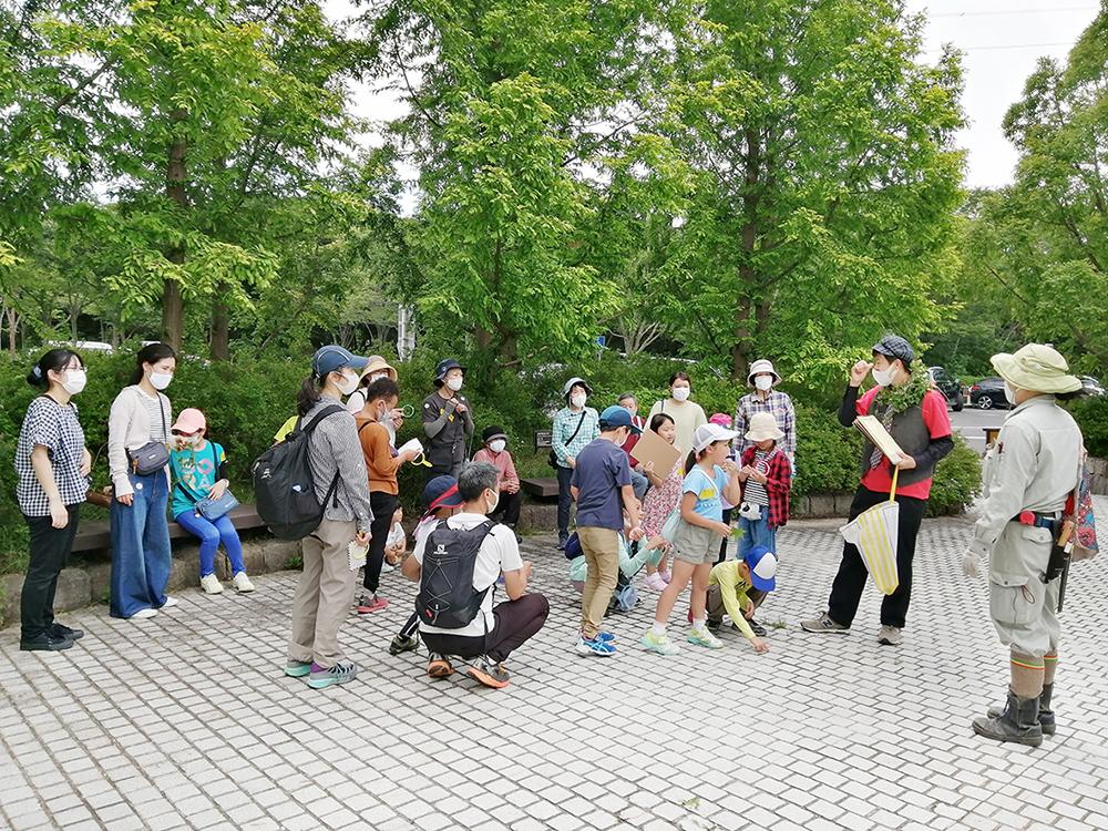 記事 森林ナゾトキ探偵団~初夏の植物園の謎をとけ!~ 神戸市立森林植物園のアイキャッチ画像
