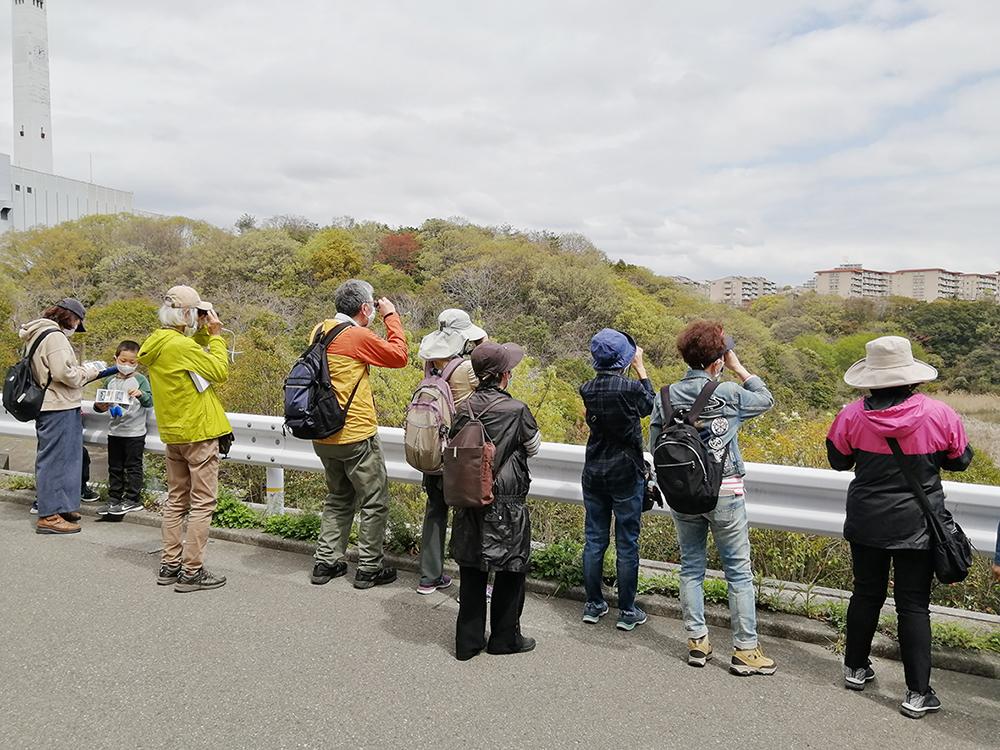 記事 「春の野鳥観察」神戸総合運動公園〜落合中央公園のアイキャッチ画像